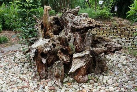 stumperies recycling wood  creating beautiful garden