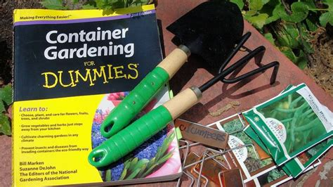 container gardening for dummies the 25 best ideas about gardening for dummies on
