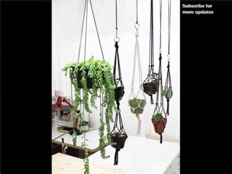 low light hanging plants indoors indoor hanging plants low light indoor house or office