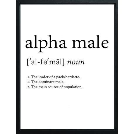 alpha definition alpha definition poster affisch plansch tavla print