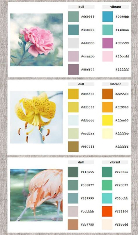 home color palette generator web help color palette generator home creature