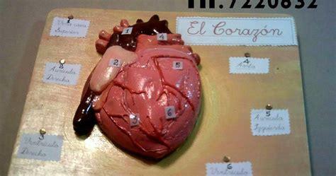 como hacer maquetas de corazon maquetas escolares cel 977524113 whatsapp como hacer