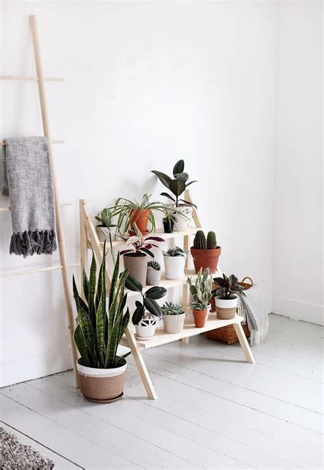 plant home decor 25 best minimalist decor ideas on minimalist