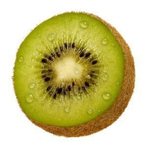 can dogs eat kiwi can i give my kiwi are kiwis okay for dogs to be