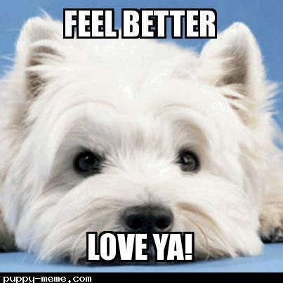 Feel Better Funny Meme - feel better