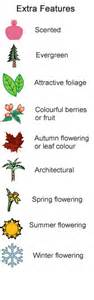 List Of Climbing Plants - climbing plants for walls and fences plants for a
