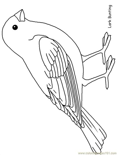 Free Coloring Page Quail by Free Bird Templates Coloring Home