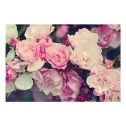 fond d 233 cran fleur vintage swag recherche google polyvore