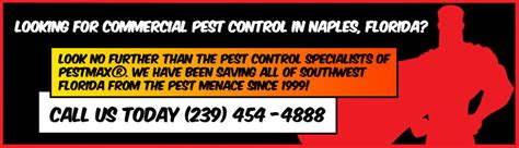 commercial pest control pestmax