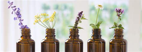 i fiori di bach funzionano come funzionano i fiori di bach istituto di