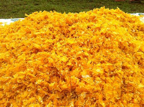 membuat makanan ringan dari jagung rupa rupa teknik cara membuat emping jagung