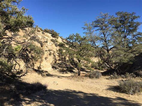 joshua tree hiking map joshua tree hiking trail warren peak summit hike