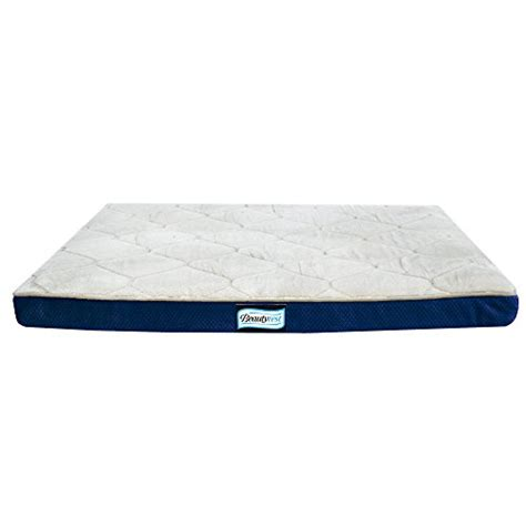 simmons beautyrest thera bed orthopedic memory foam