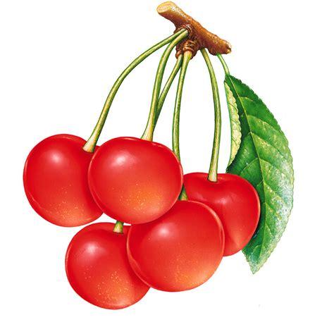 imagenes de uvas y cerezas gifs y fondos pazenlatormenta im 193 genes de frutas