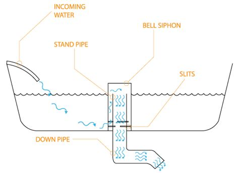 bell syphon diagram aquaponicsnoob understanding the bell siphon
