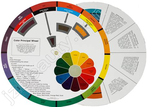 color wheel for hair the hair color wheel hair and other musings of hair dye