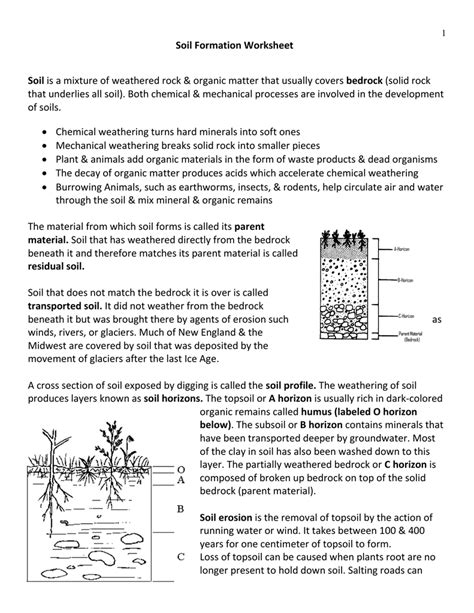 Soil Formation Worksheet Answers by Uncategorized Soil Worksheet Klimttreeoflife Resume Site