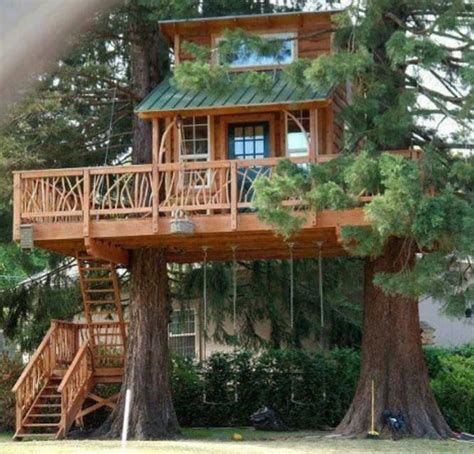 tree house back yard garden