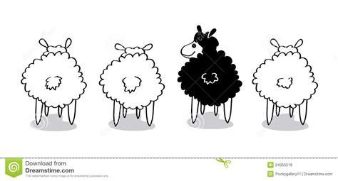 imagenes de ovejas negras ovejas negras im 225 genes de archivo libres de regal 237 as
