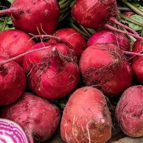 Bubuk Biji Pala Asli Tanpa Curan Alami jual bubuk buah bit kering beetroot powder asli cairo food