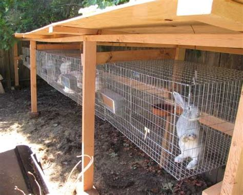 Rabbit Sheds by 25 Best Images About Rabbit Shed On Rabbit