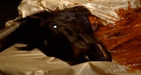 horse head in bed movie animated gif