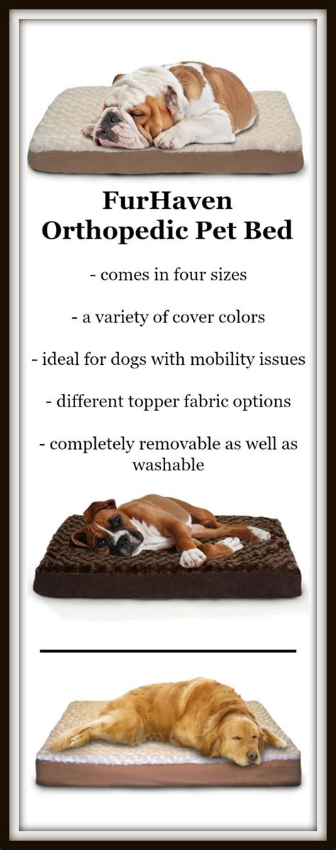 orthopedic dog bed reviews best orthopedic dog bed reviews images on pinterest dog
