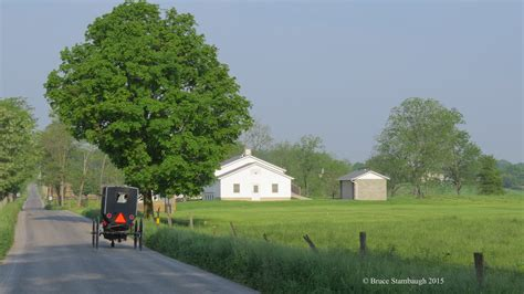 dutch country holidays roadkill crossing and other tales from amish country