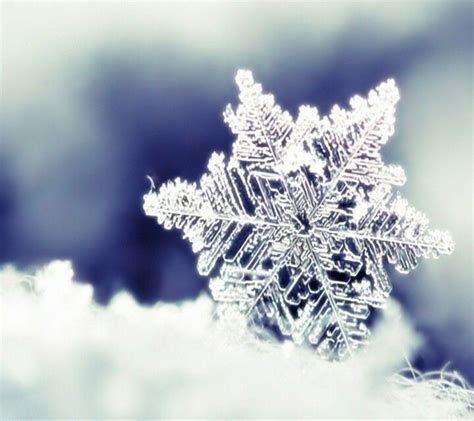 489 best i love snowflakes and snow angels images on