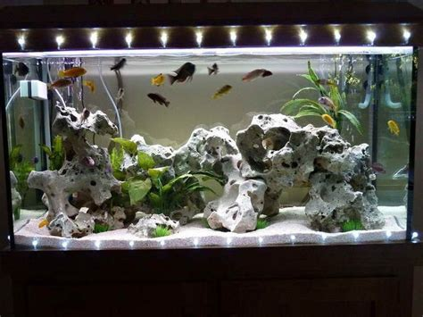 Decorating Ideas For Fish Tank Aquarium Decorations Http Monpts Some