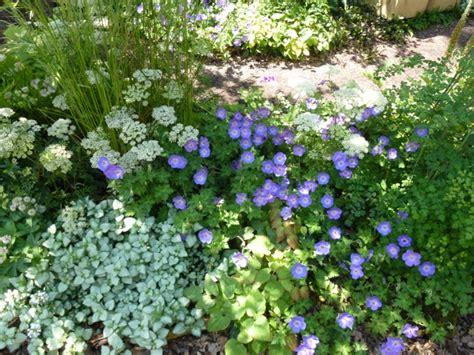 Tropical Planting Scheme - seven of the best gardens the enduring gardener