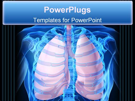 powerpoint templates free lungs 3d rendered illustration of a human skeleton with lungs