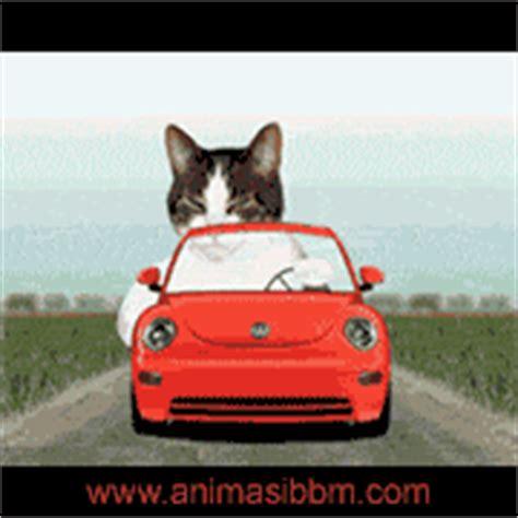 membuat foto gif untuk dp bbm search results for dp bbm tema kaskus calendar 2015