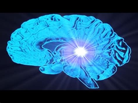 Detox Your Pineal Gland Decalcify In 1 Hour by Activation Videolike