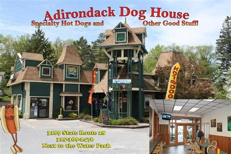 adirondack dog house adk doghouse picture of adirondack dog house old forge tripadvisor