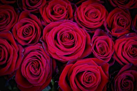 imagenes rojas tumblr am 1 05 11 1 06 11