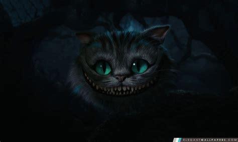wallpaper hd chat lunette chat de cheshire alice au pays des merveilles fond d