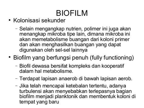 biofilm adalah water system