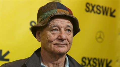 bill murray dogs bill murray defends dustin hoffman over sexual harassment
