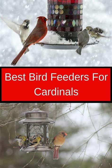 best bird feeders のおすすめアイデア 25 件以上 pinterest 手作りの鳥の餌箱