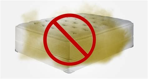 What Is 23 Hour Observation Bed For Detox by How To Detox Your Bed Get A Healthy Mattress Best
