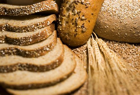 whole grains with high protein high protein diet benefits risks in pictures