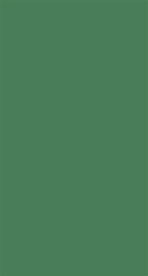 wallpaper green plain plain seafoam green background www imgkid com the