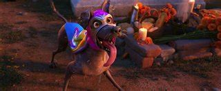 coco film sinopsis coco on dvd movie synopsis and info