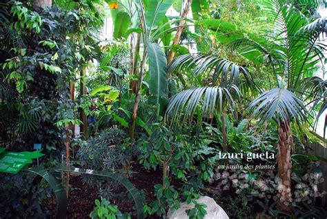 plantes et jardins serres les serres du jardin des plantes sublim 233 e par une exposition le poly 232 dre