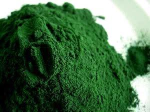 Granola Green Tea 1kg bio spirulina platensis pulver kaufen 1kg 500g