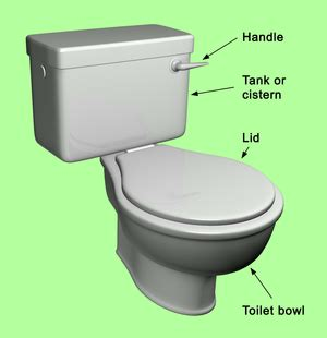 wikijunior how things work flush toilet wikis the