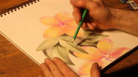 how to draw with colored pencils how to draw flowers with colored pencils