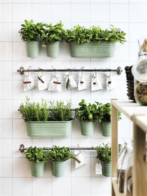 indoor kitchen garden ideas indoor herb garden with fintorp rail and hooks