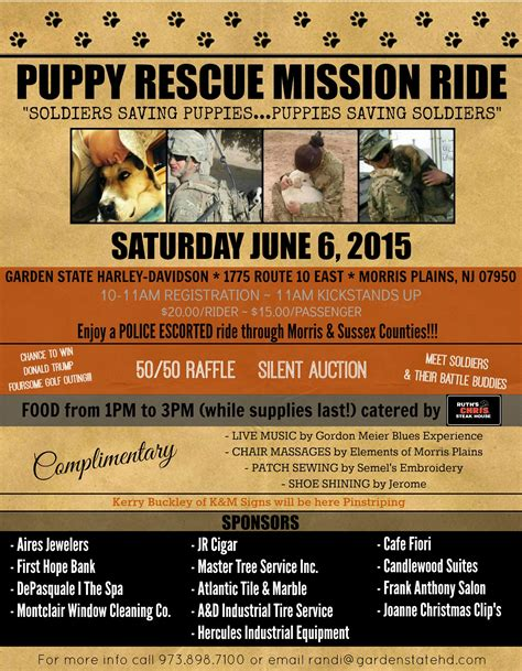 puppy rescue mission puppy rescue mission aims to reunite soldiers and animals njtv news